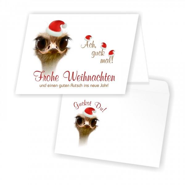Lustige Weihnachtskarten Umschlaege Strauss Muetze