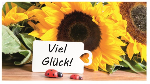 Xxl Postkarte Sonnenblume Viel Glück