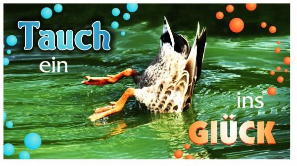 Xxl Postkarte Tauch Ins Glück Ente