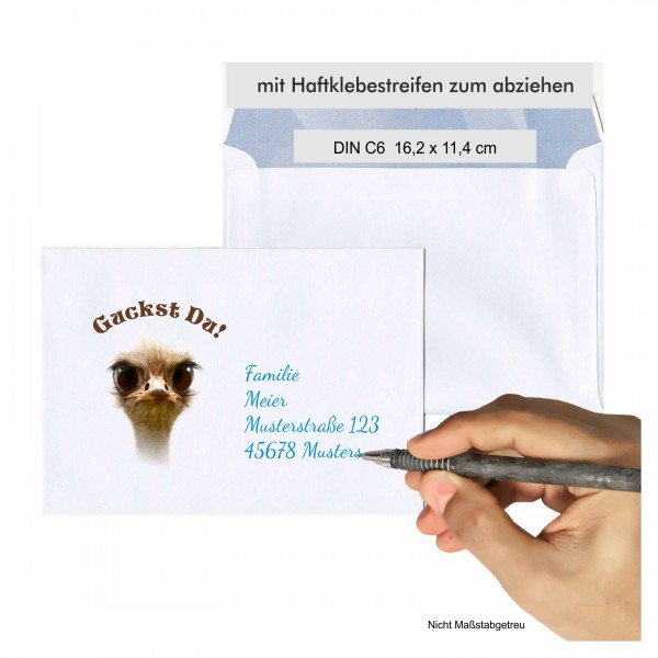 Briefumschlag Lustiger Vogel Strauss C6