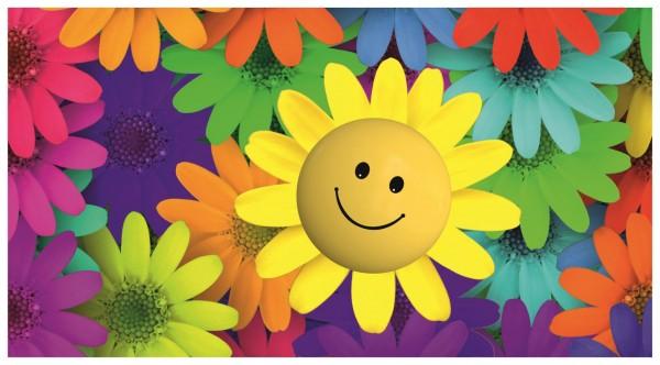Sonnenblume Bunt Gelb