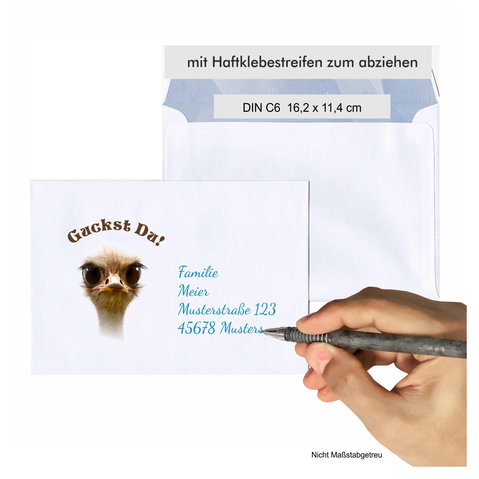 Ideal f/ür Hochzeits-Einladungen Gru/ßkarten Weihnachtskarten Nassklebung ohne Fenster 50 Weisse Briefumschl/äge mit rosa Seidenfutter DIN B6 12,5 x 17,6 cm
