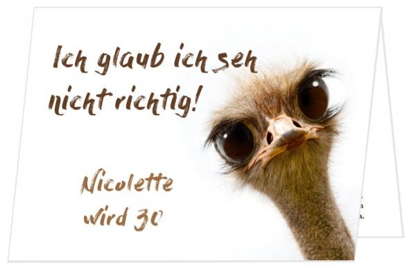 Lustige Geburtstagseinladung Schräger Vogel
