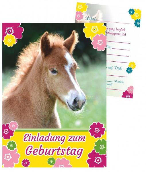Kindereinladungen Geburtstag Fohlen Pferd