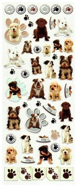 Süße Hunde