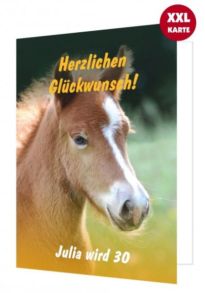 Glückwunschkarte für Frauen mit Fohlen Pferd